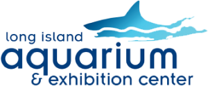 Long Island Aquarium coupon codes