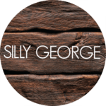 sillygeorge.com